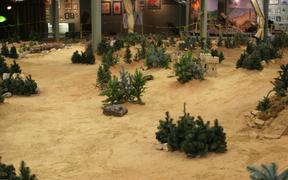 Radio Control Tank Battles